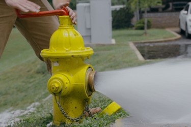 Hydrant Humor: Tales From The Field