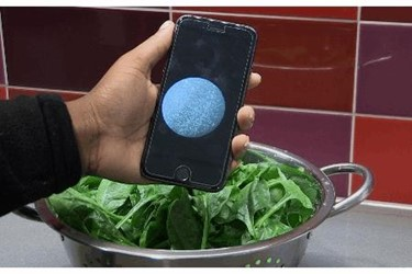 He spinach and sensor