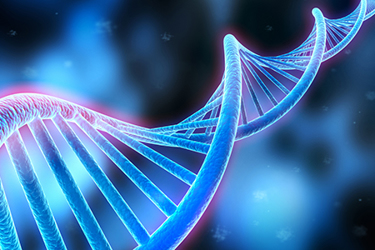 DNA sequence, DNA code