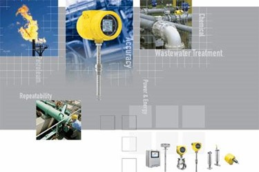 Catalog: Air, Gas, Liquid Flow Meters, Flow Switches and Level Switches