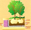 Insulated Drainage Panel