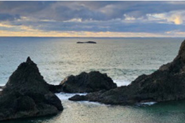 375_250-seal_rock_email_header