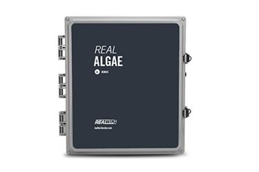 Real ALGAE AL
