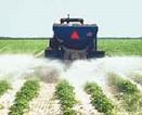 Soil Amendment and Fertilizer