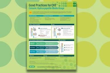 Good Practices For CHT Ceramic Hyrdroxyapatite Media Usage