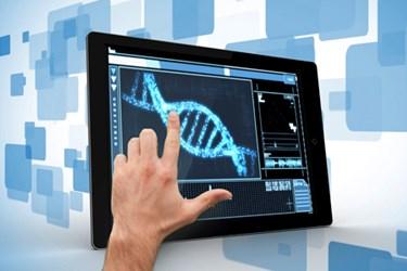 BSM-DNA